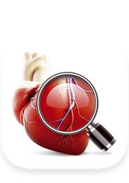 Multimedialny atlas anatomiczny